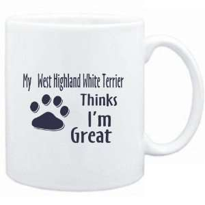 West Highland White Terrier THINKS I AM GREAT  Dogs Sports