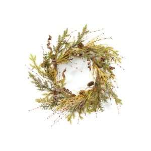 Pack of 2 Modern Lodge Frosted Pine, Cone & Berry Christmas Wreaths 20