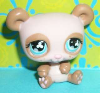 Littlest Pet Shop~#645 SMOOTH BROWN PANDA BEAR VARIANT Not Fuzzy~P144