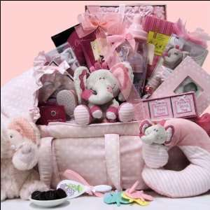 Best Wishes ~ Girl Baby Gift Basket