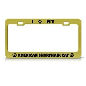 American Shorthair Cat Gold Metal license plate frame Tag Holder