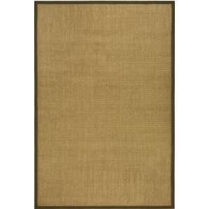Collection Brown Sissal Area Rug, 9 Feet by 12 Feet