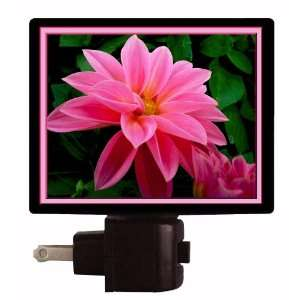 Floral / Flower Night Light   Pleasure   Flower   LED NIGHT