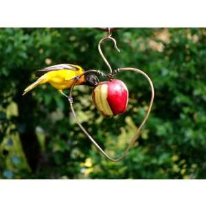 Fruit Feeder (Bird Feeders) (Fruit and Jelly Feeders)